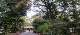 Wizyta u Rektora Akademii Sztuk Pieknych w Tokyo.